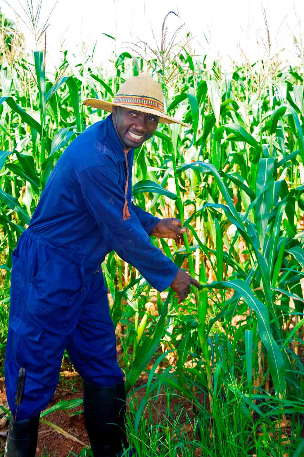 Samuel Mahamadu shows off maize he grew on his farm in Ghana.