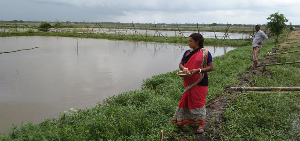 Seema Mondal, a 28-year-old shrimp and carp farmer checks her pond