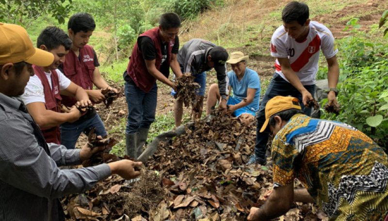 Coffee farmers in the San Martin region of Peru to carry out composting training